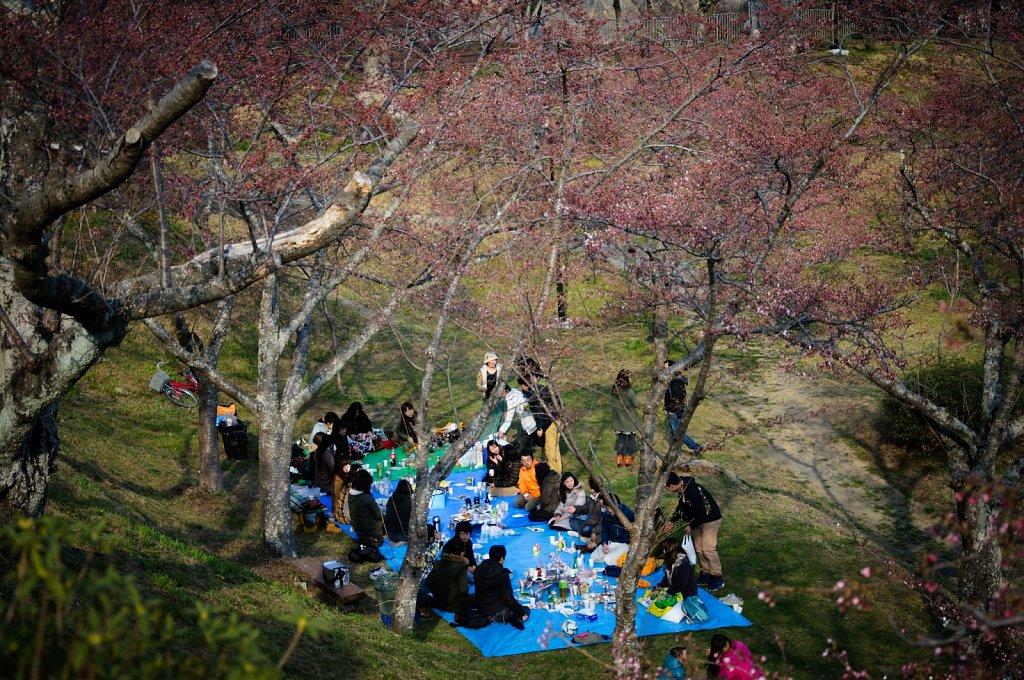 Japan-2012-DSC0555.jpg