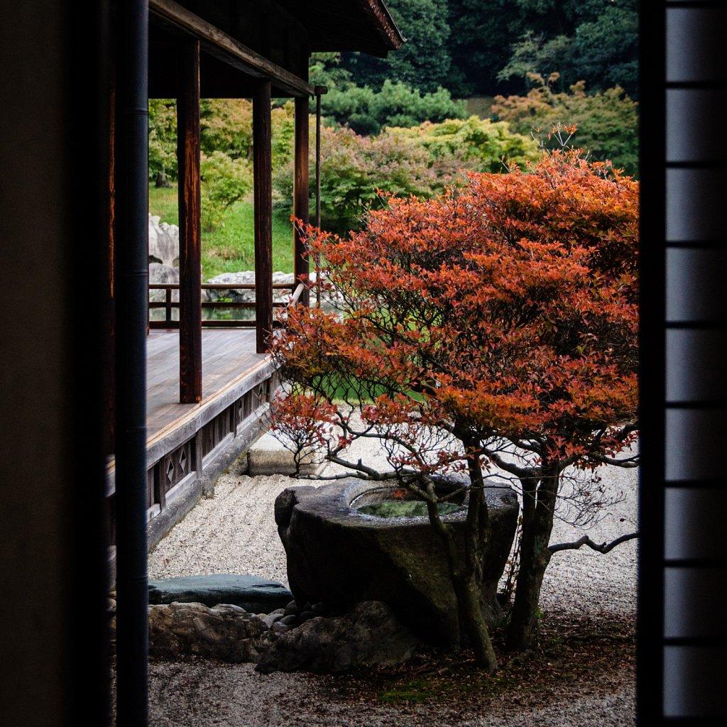 Japan-2014-DSC-8521.jpg