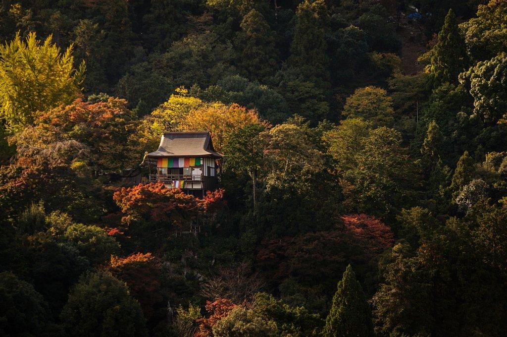 Japan-2014-DSC-0309.jpg